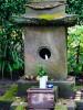 Храм кошек в Японии